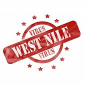 Red Weathered West Nile Virus Stamp Circle And Stars Design