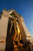 Standing Gold Buddha Image Name Is Wat Sra Song Pee Nong In Phitsanulok, Thailand
