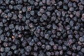 stock photo of chokeberry  - Heap of dried Chokeberries for use as background image or as texture - JPG