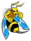 picture of hornets  - Cartoon hornet mascot on the white background - JPG