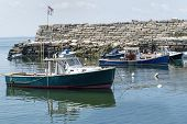 picture of lobster boat  - Lobster boats anchored in Lanes Cove Rockport Massachusetts - JPG