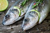 Two Raw Seabass With Lime And Rosemary Close Up