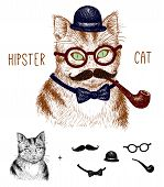 Hipster tabby cat isolated on white with hipster elements and icons.