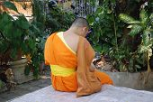 Buddhist priest praying