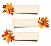 Vector beige banners with colorful autumn leaves.