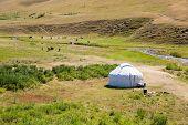 Kazakh Yurt In Assy Plateau In Tien-shan Mountain  In Almaty, Kazakhstan,asia At Summer. Nature Of