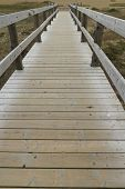 Wooden Footbridge Or Boardwalk, Chesil Beach.