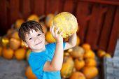 Little Boy Holding Yellow Pumpkin