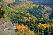 Driving Rocky Mountain's Fall Beauty
