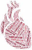 Heart Transplantation. Word Cloud Illustration.