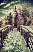 picture of frozen  - A view looking across a frozen wooden bridge with snow packed foot prints with the sun shining through frozen trees on the other end - JPG