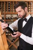 Sommelier Choosing Wine.