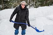 picture of snow shovel  - A portrait of a healthy senior woman holding a shovel full of snow on a cold snowy day - JPG