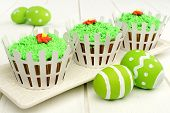Spring cupcakes with white picket fence