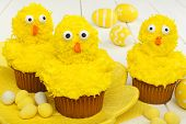 Spring chick cupcakes with Easter eggs