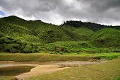 Green Hills Covered With Tea Bushes And Small River In Front Of It - All Under Stormy Sky