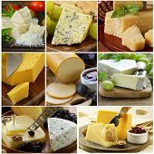 collage of various types of cheese (brie, parmesan, cheddar, blue)