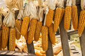 dried corn hung up wooden cart thai Style ,Thailand