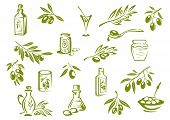 Green fresh, pickled olives and olive oil symbols