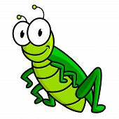 pic of googly-eyes  - Funny bright green grasshopper cartoon character with big googly eyes and small antennas isolated on white background for children design - JPG
