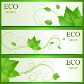 Abstract green leaves eco vector banners.