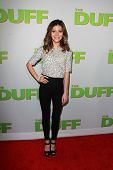 LOS ANGELES - FEB 12:  G. Hannelius at the