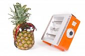 pineapple and Facial solarium