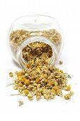 picture of chamomile  - Closeup of dried chamomile dried chamomile pouring out of glass jar - JPG