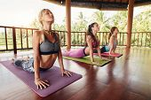 Fitness Group Doing Cobra Pose In Row At Yoga Class poster