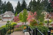 Home Entrance Front Yard Lawn Landscaped Garden With Railings Water Fountain Flowering Trees And Pln poster