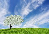 stock photo of paysage  - Concept of a cash tree with falling 100 Euro banknotes leaves.