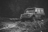 Dirty Offroad Car With Dark Forest On Background, Defocused. Pile Of Branches In Front Of Car. Suv A poster