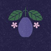 Plum Illustration. Plum With Leaves And Flowers On Shabby Background. Flat Design. Original Simple F poster