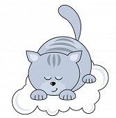 Small blue pretty cat sleeping on a cloud