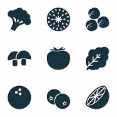 Fruit Icons Set With Acorn, Coco, Spinach And Other Coconut Elements. Isolated Vector Illustration F poster