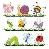 picture of mayfly  - Illustration of bugs on grass - JPG