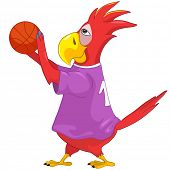 Cartoon Character Funny Parrot Isolated on White Background. Basketball. Vector EPS 10.