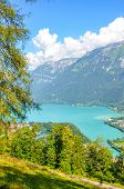 Turquoise Lake Brienz In Interlaken, Switzerland Photographed From The Hiking Path To Harder Kulm. A poster