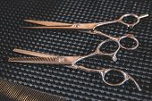 Stylish Professional Barber Scissors.haircut Accessories. Hairdresser Salon Concept, Hairdressing To poster