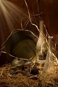 foto of loamy  - a still life founded in the old barn - JPG