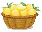 Illustration of a basket of lemons on a white background