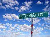 Determination Drive