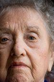 Elderly Woman Portrail