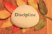 stock photo of discipline  - Positive reinforcement word Discipline engrained on a rock - JPG