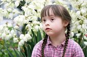 picture of playgroup  - Portrait of beautiful young girl in the park - JPG