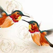 image of fern  - Vector illustration with couple of realistic humming birds for design - JPG