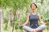 Постер, плакат: Йога и медитация