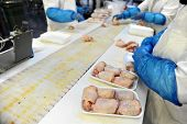 stock photo of poultry  - Food industry detail with poultry meat processing - JPG