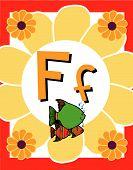 image of nouns  - Flash Card Letter F nouns - JPG