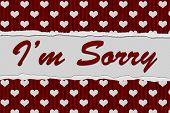 I'm Sorry Message